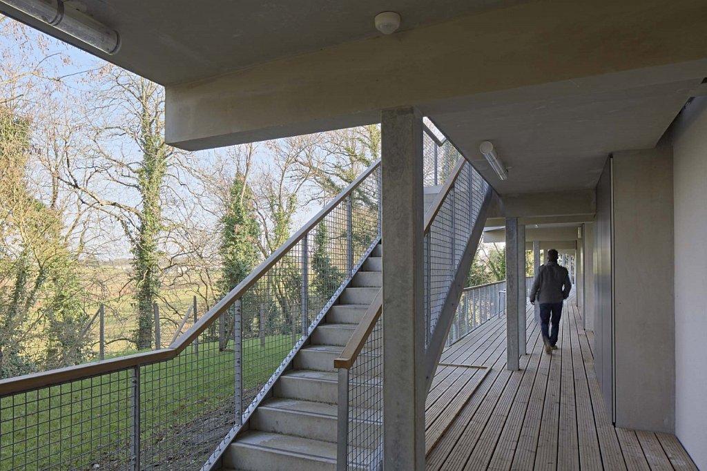 SAINT-JEAN-DE-BOISEAU-Matisse-17-GSatre-non-libre-de-droits.jpg