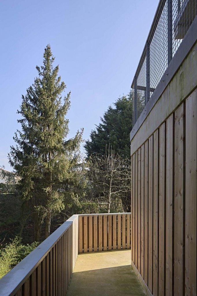SAINT-JEAN-DE-BOISEAU-Matisse-18-GSatre-non-libre-de-droits.jpg